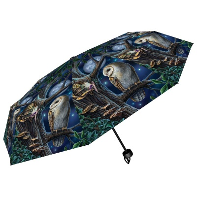 Fairy Tales Umbrella by Lisa Parker