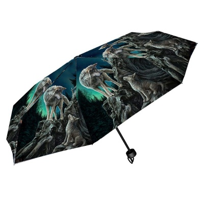 Guidance Umbrella by Lisa Parker