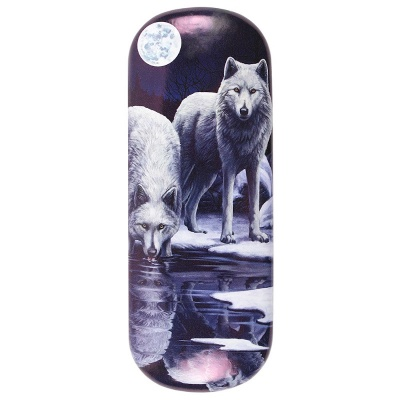Warriors of Winter glasses case by Lisa Parker