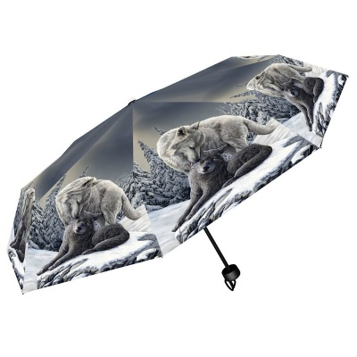 Snow Kisses Umbrella by Lisa Parker