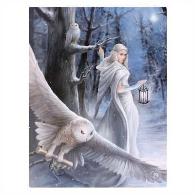 Midnight Messenger Small Canvas by Anne Stokes