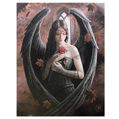 Angel Rose Small Canvas by Anne Stokes