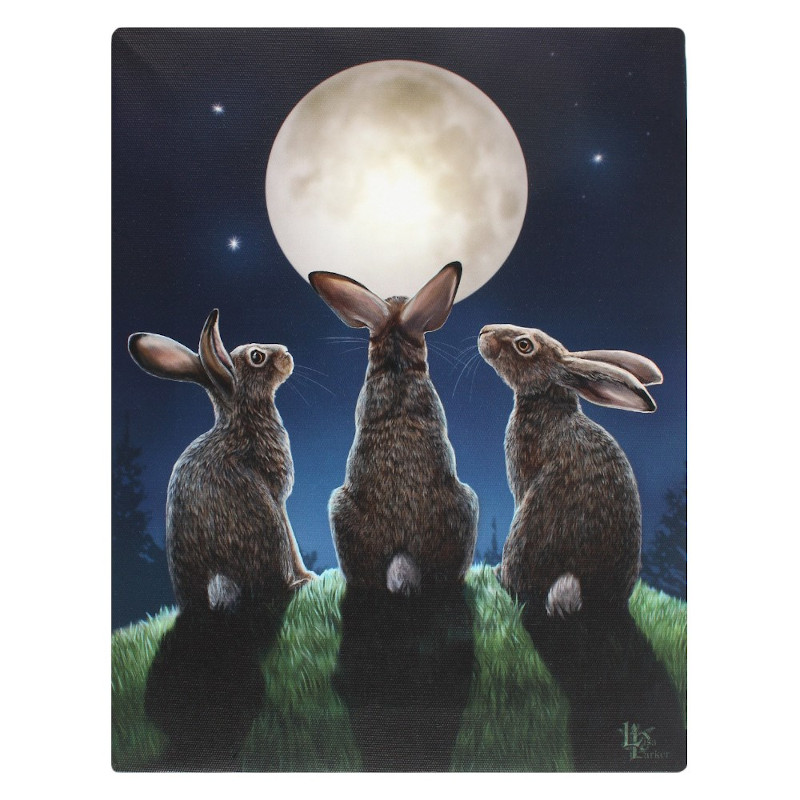 Moon Shadows Canvas by Lisa Parker